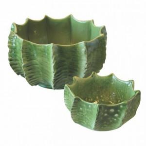 UNC cactus bloempotten